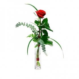 Florero con 1 Rosa Roja