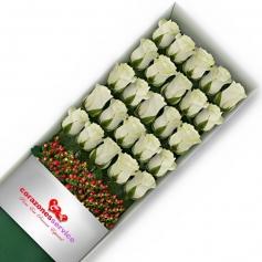 Cajas de Rosas Blancas