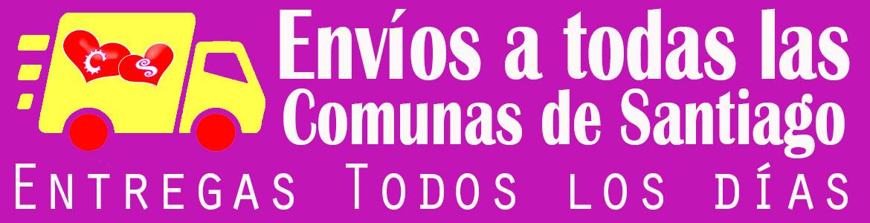ENVIO DE FLORES A TODAS LAS COMUNAS DE SANTIAGO